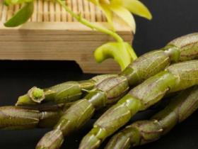 铁皮石斛咋样吃最好?几种普遍的食用类型